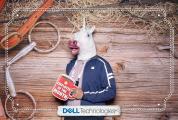 DellStampede2019-0021-PRINT