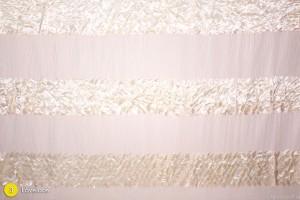 Lovelace - Chiffon and Cream Scallops Photography Backdrop