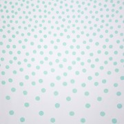 Confetti Mint on White Backdrop