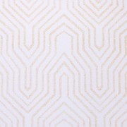 Gatsby White with Gold Champagne Glitter Backdrop