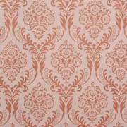 Chantilly Peach on Nude Backdrop